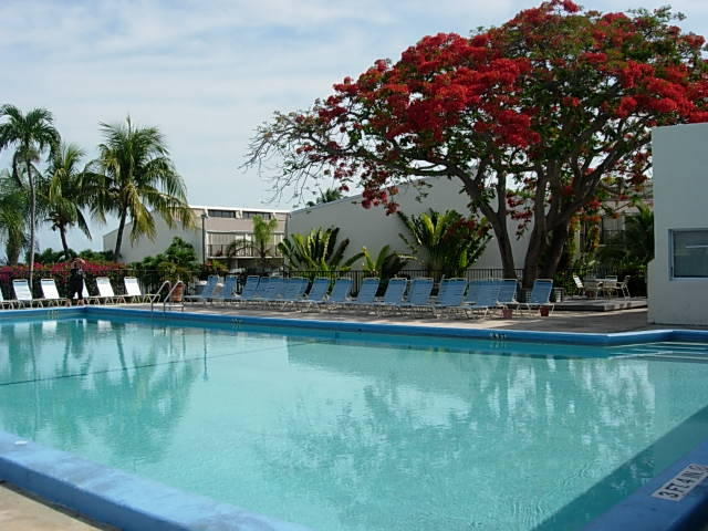 Florida keys rentals executive bay club islamorada condos - Is there sales tax on swimming pools ...